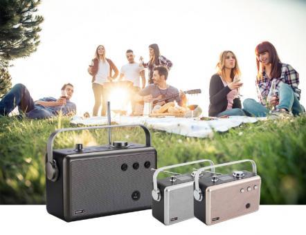 Ferguson Radio Regent P1 - DAB+ / FM / BT / USB /LCD-Display/Akku 4000 mAh